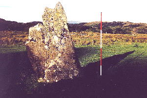 Ardpatrick standing stone -  photo
