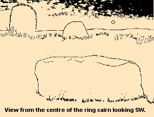 Bruiach ring cairn - drawing