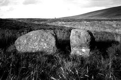 Sherrifmuir alignment - split stone